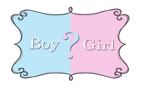 Boy or girl fetus