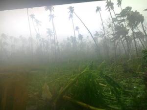 cyclone_evan_samoa_2_234_N2